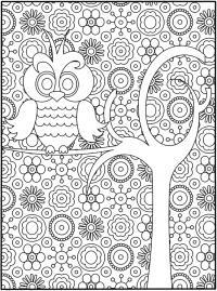 Сова с цветами на ветке дерева в хорошем качетве Раскраски для взрослых скачать