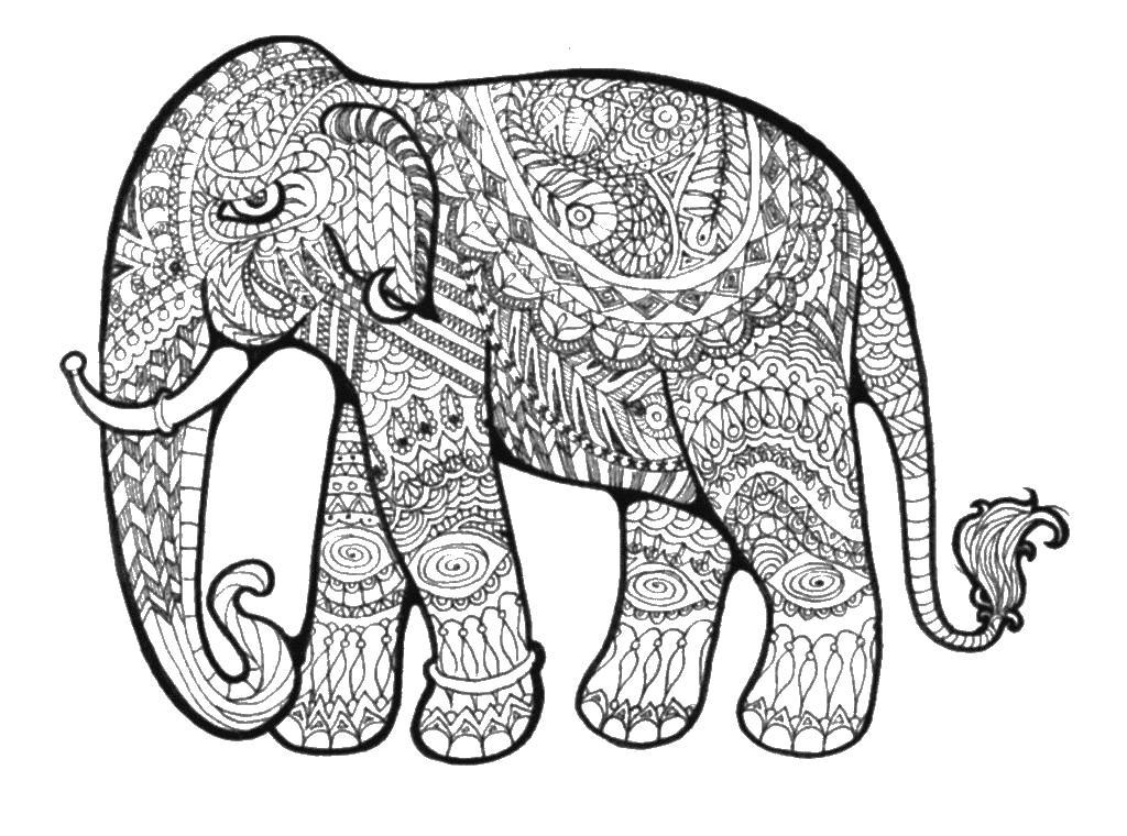 Слон в узорах Раскраски для взрослых скачать