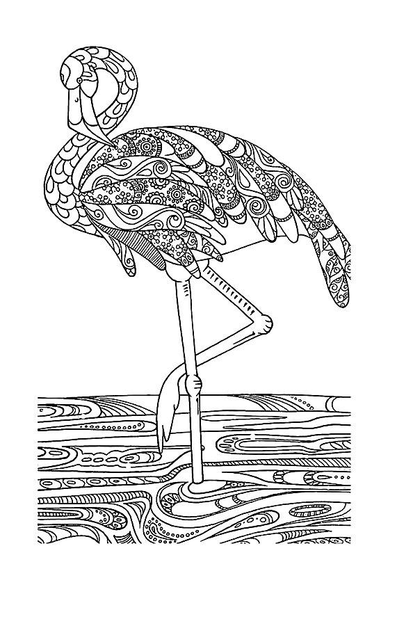 Фламинго Антистрессовые раскраски