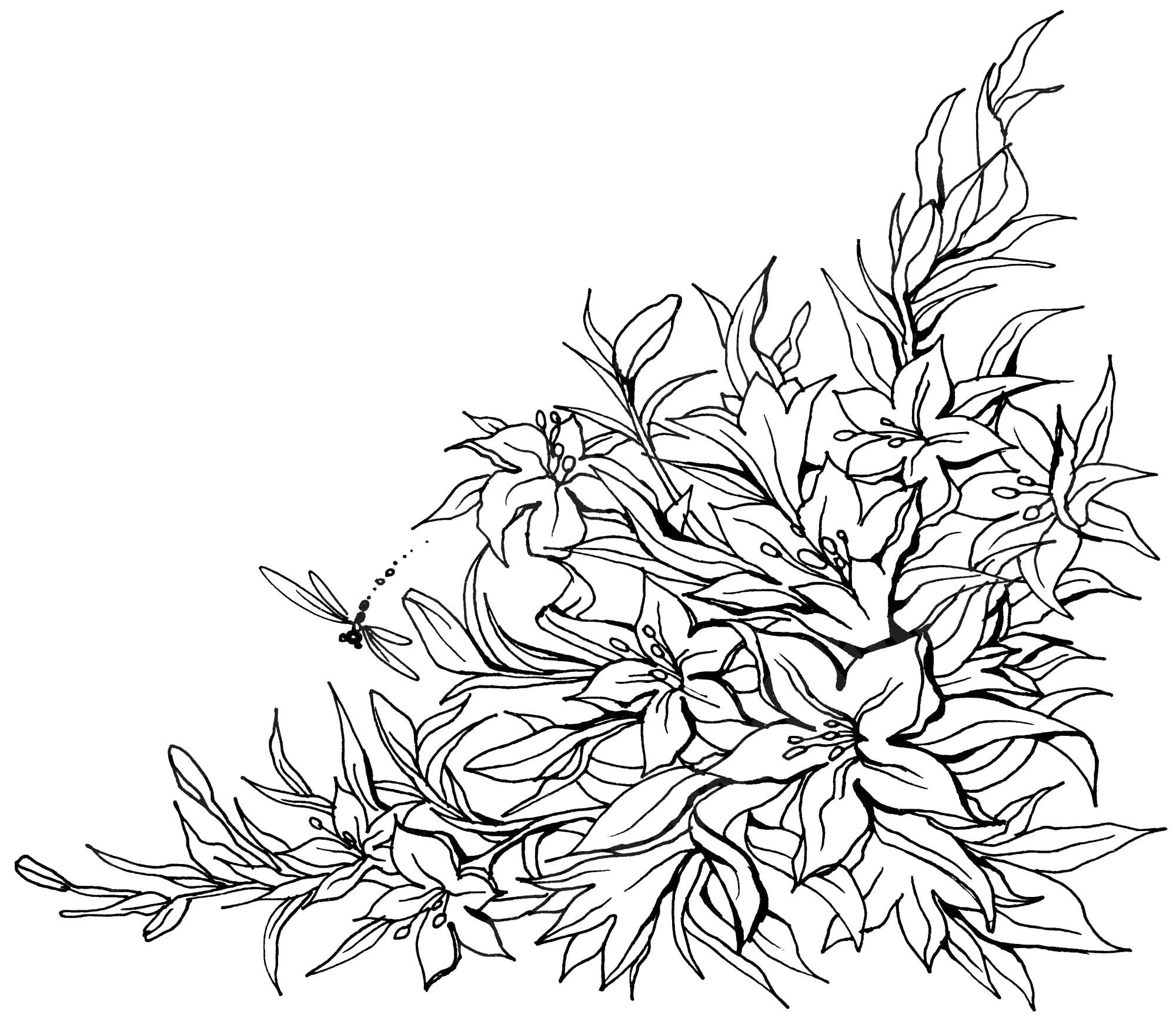 Рамка с лилиями на правый нижний угол Раскраски для взрослых антистресс