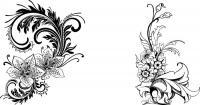 Узор с лилиями, узор с цветами Картинки антистресс раскраски