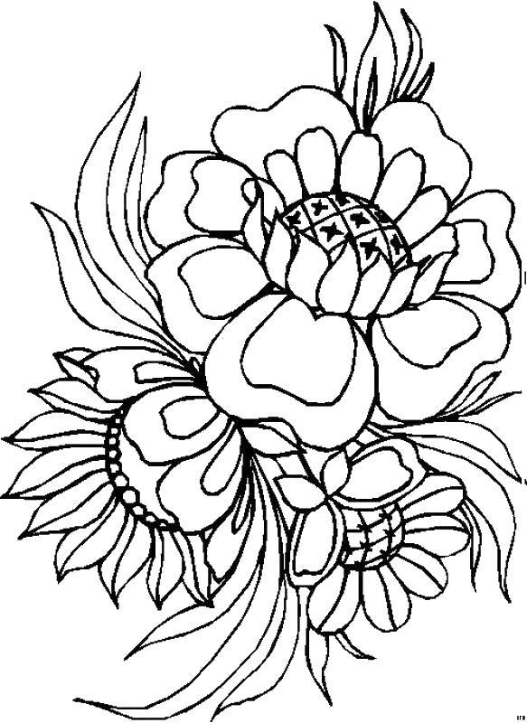 Цветы Цветы с большими серидинками Антистрессовые раскраскиАнтистресс онлайн