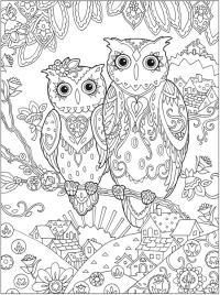 Две совы на ветке Раскраски для взрослых скачать