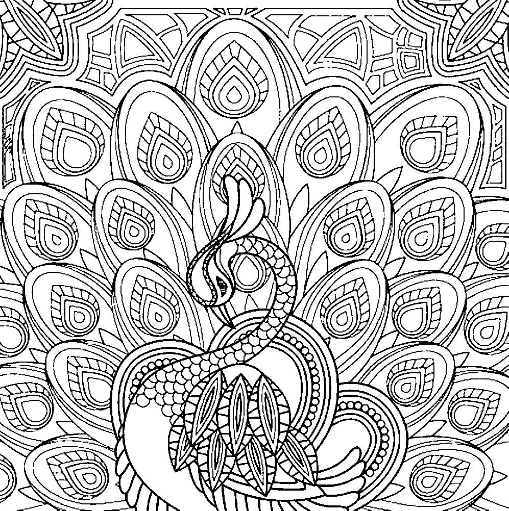 Лебедь и перья перо Раскраски антистресс а4