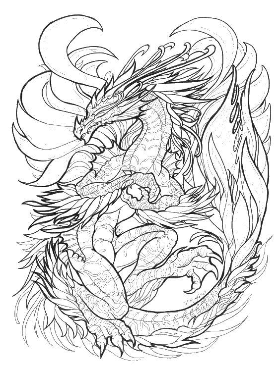 Злой дракон с длинным хвостом Раскраски для взрослых скачать