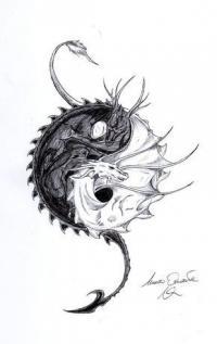Дракон с инь и янь Раскраски для взрослых скачать