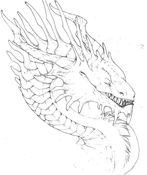 Голова дракона Голова дракона Раскраски для медитацииАнтистресс онлайн