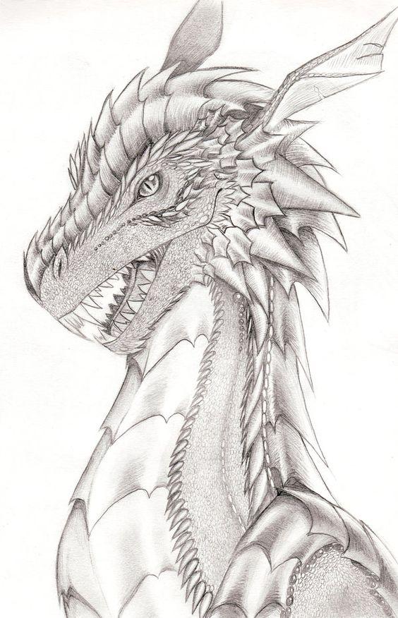 Голова дракона с милыми ушками Раскраски для взрослых скачать