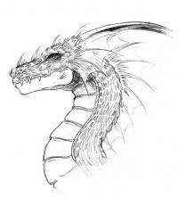 Голова дракона с шеей Картинки антистресс раскраски