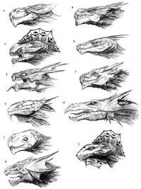 Учимся рисовать различные головы драконов Картинки антистресс раскраски
