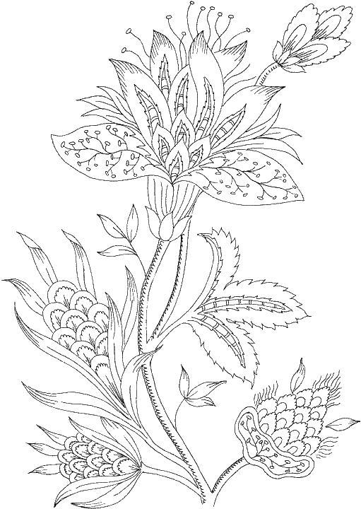 Большой цветок Раскраски для медитации