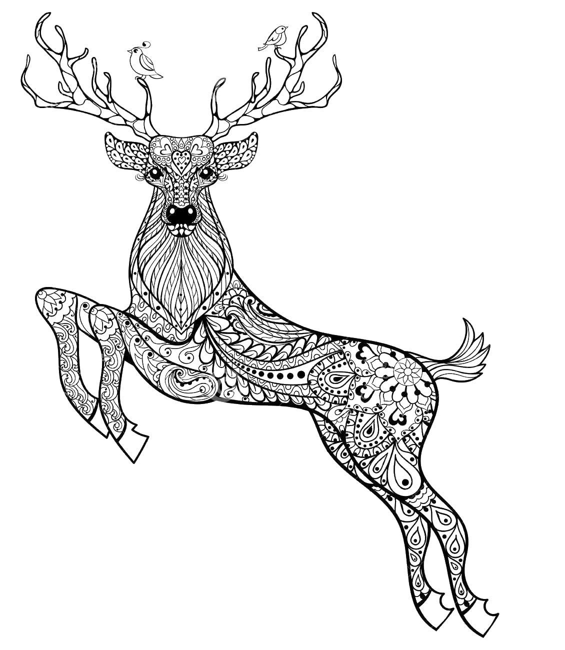 Раскрашенные раскраски антистресс олень