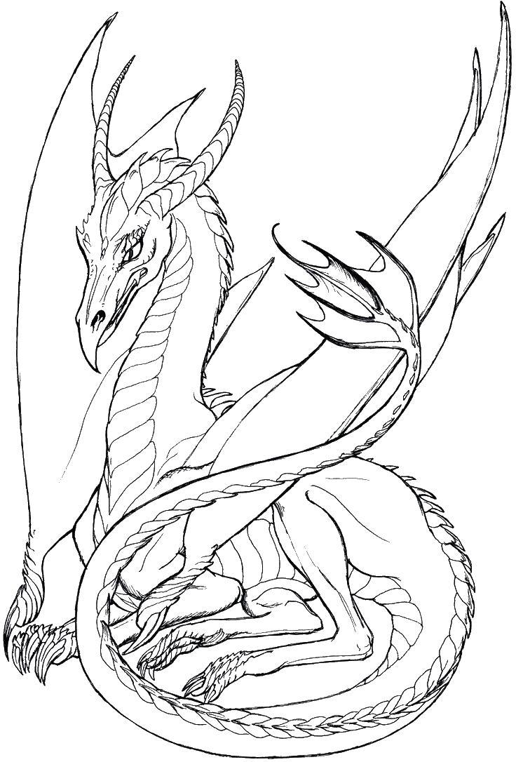 Дракон с длинным хвостом Раскраски для взрослых скачать