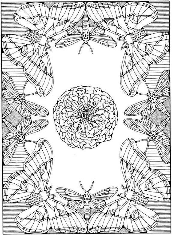 Мотыльки и бабочки Картинки антистресс раскраски