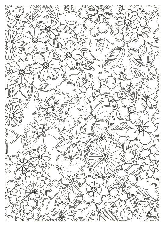 цветы и бабочки раскраски антистресс бесплатно
