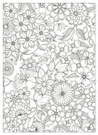 Цветы и бабочки Раскраски для взрослых скачать