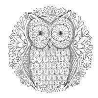 Сова с большими глазами с узором цветов Медитативная раскраска