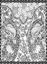 Павлины среди цветов Антистрессовые раскраски
