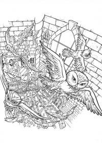 Совы в замке Медитативная раскраска