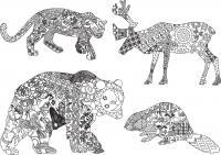 Олень, пантера, медведь, бобер Раскраски антистресс бесплатно