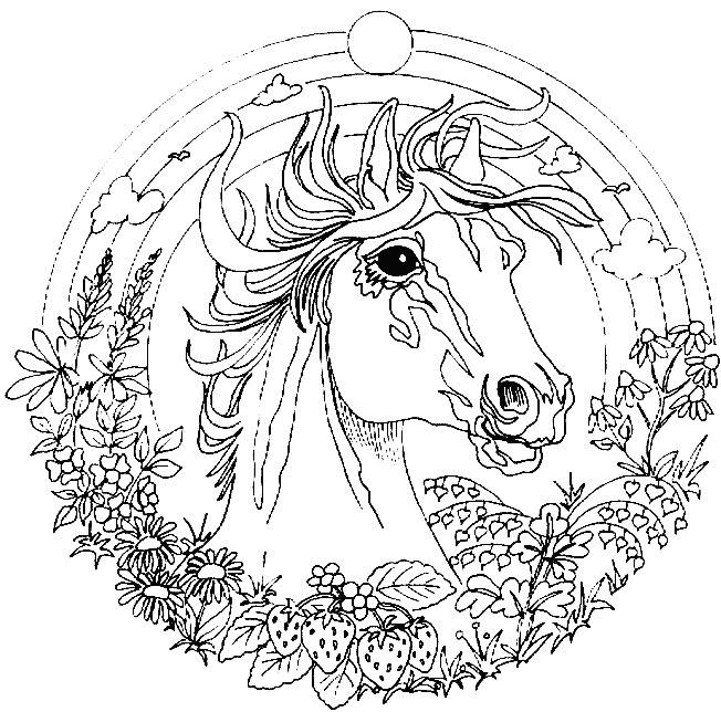 Лошадь в круге из радуге и цветов, земляники Раскраски антистресс бесплатно