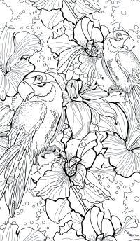 Лилии и попугаи Антистрессовые раскраски