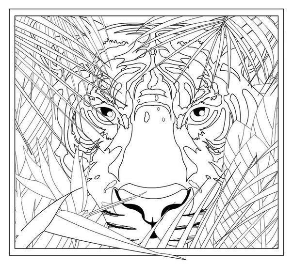 Тигр в листе папоротника Раскраски антистресс бесплатно