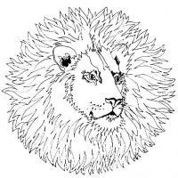 Лев с большой гривой Раскраски антистресс бесплатно