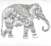 Слон Раскраски антистресс бесплатно