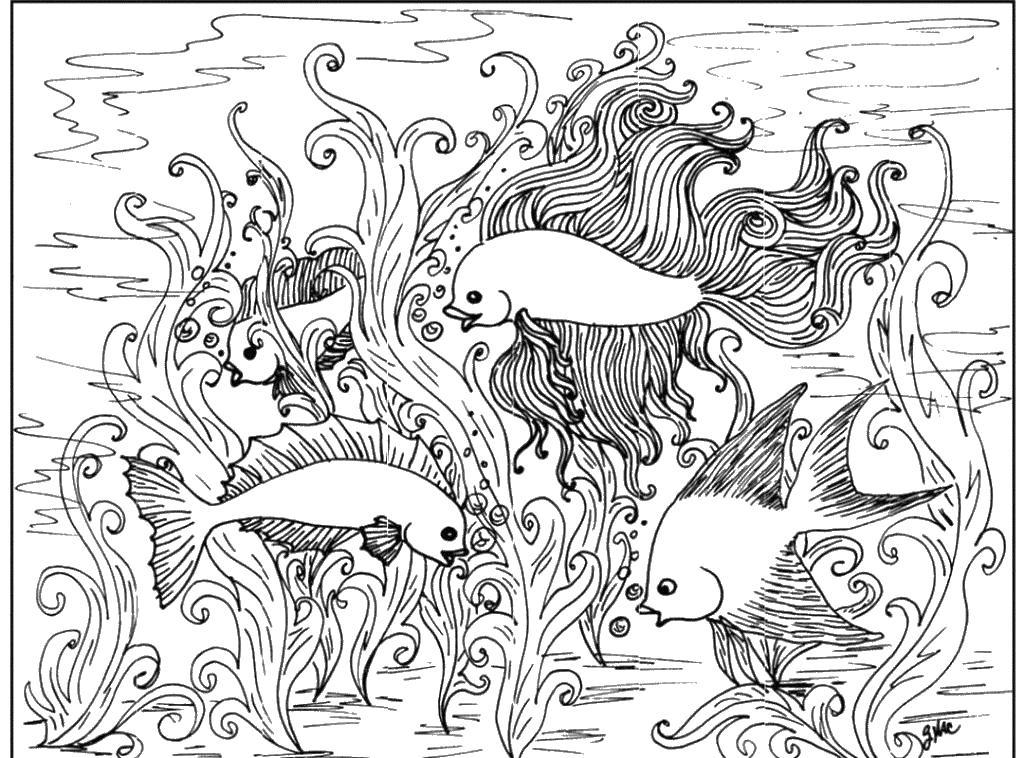 Сложная раскраска с рыбами Скачать сложные раскраски