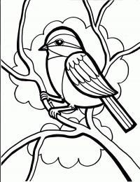 Птица на ветке Скачать сложные раскраски