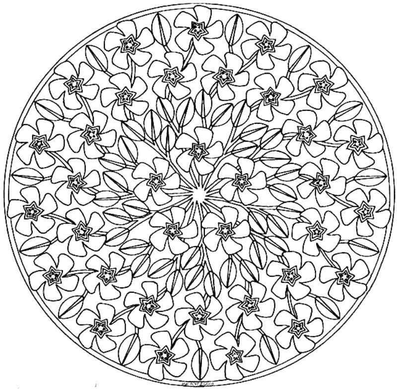 Узоры с цветами по пять лепестков Скачать сложные раскраски