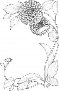 Круглые цветы Раскраски для взрослых скачать