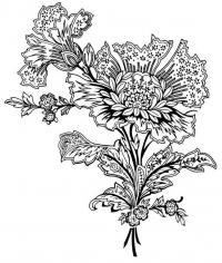 Цветок с узорами Раскраски антистресс в хорошем качестве