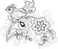 Райская птица Антистрессовые раскраски