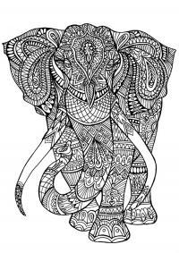 Узоры со слонами Раскраски для взрослых скачать
