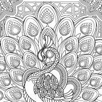 Лебедь и перья Лучшие раскраски антистресс