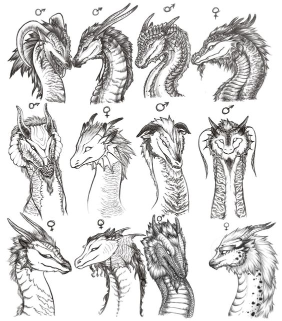 Различные варианты голов драконов Раскраски для взрослых скачать