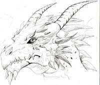 Голова дракона Раскраски для взрослых скачать