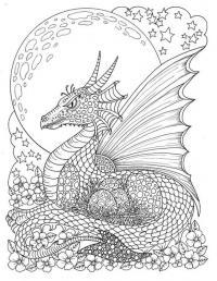 Дракон высиживает яйца Раскраски для взрослых скачать