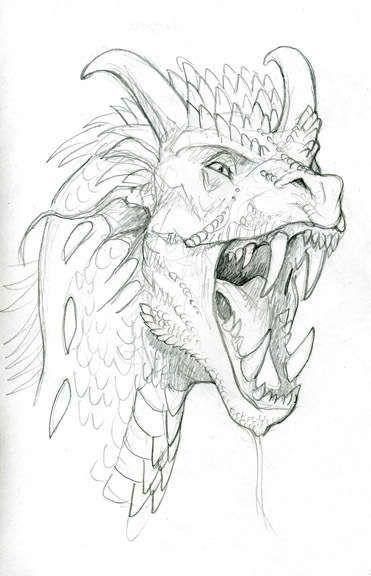 Голова дракона с открытой зубастой пастью и рогами Раскраски для взрослых скачать