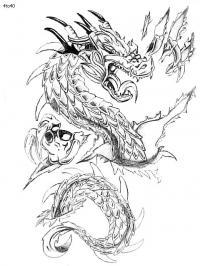 Злой дракон Раскраски для взрослых скачать
