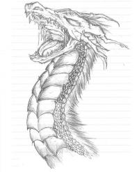 Голова злого дракона Картинки антистресс раскраски