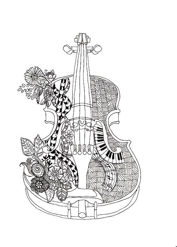 Скрипка Раскраски для взрослых антистресс