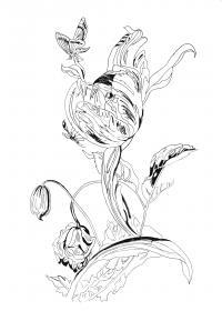 Огромный цветок и бабочки Раскраски для медитации