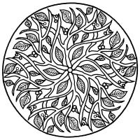 Вишня в круге Скачать сложные раскраски
