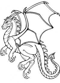 Летающий дракон Антистрессовые раскраски