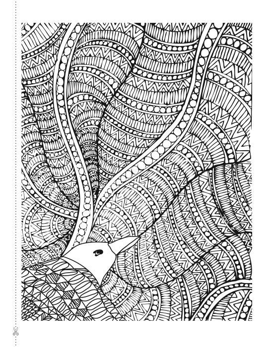 Полет птицы Антистрессовые раскраски