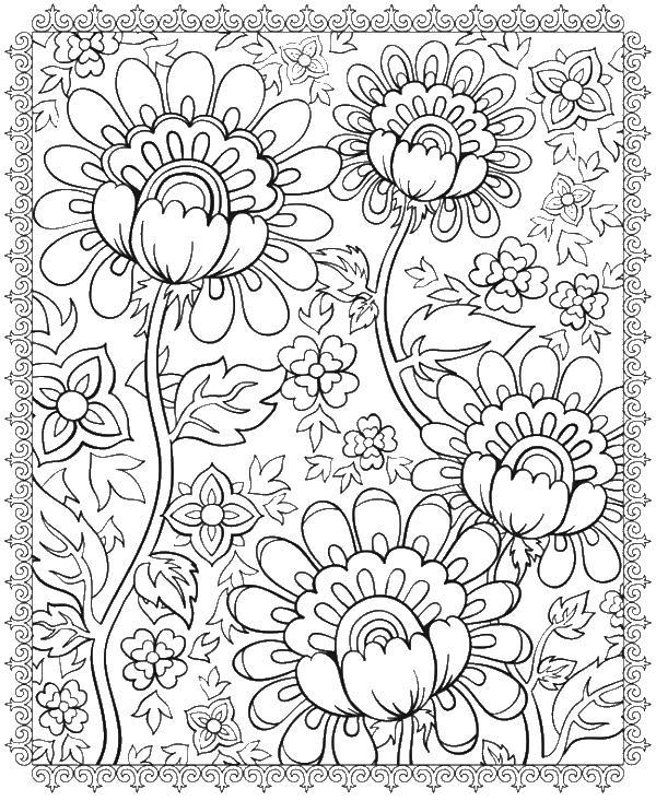 Цветы в рамке с узором Раскраски для взрослых скачать