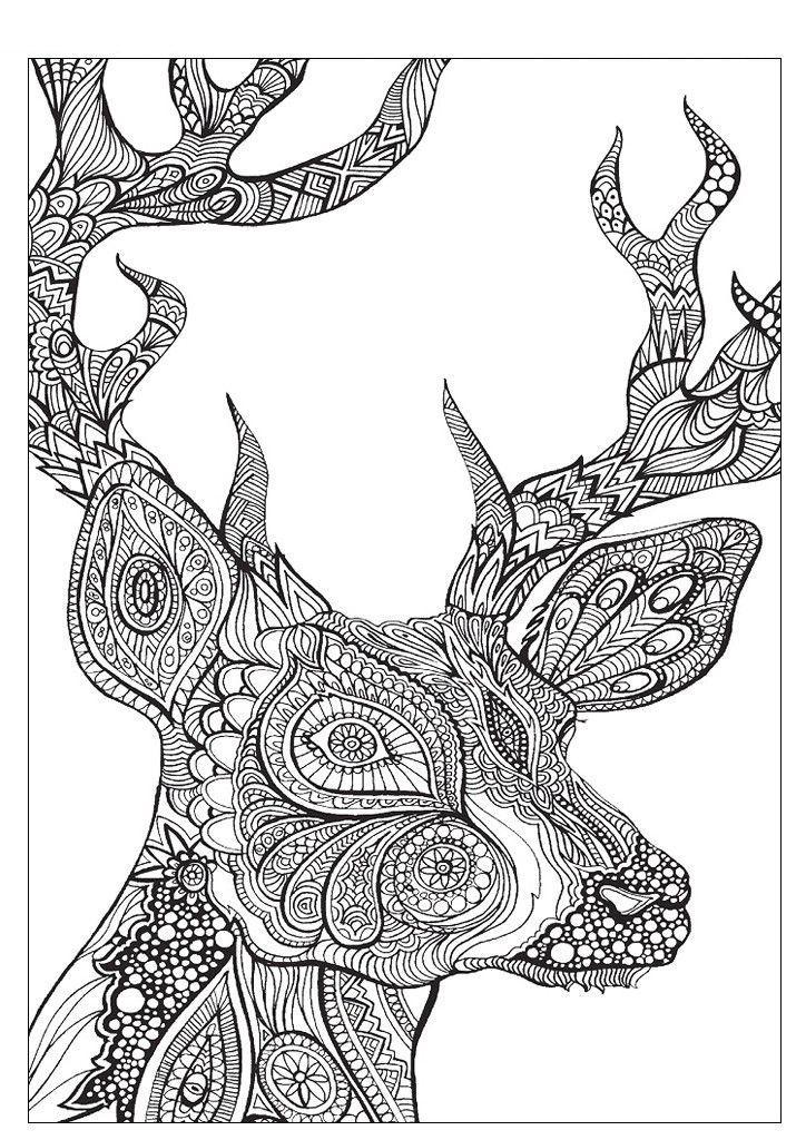 Лошадь лошадь Раскраски для медитации